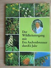Der Wildkräutergang mit Eva Aschenbrenner durch´s Jahr Kräuterheilkunde