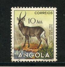 1953 - ANGOLA - 10 Ags. KOBUS - USATO - LOTTO/29036
