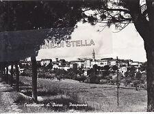 CARTOLINA MARCHE ANCONA-  CASTELLEONE DI SUASA, PANORAMA