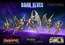 Raging Heroes - Dark Elves - Harpies - Command Group