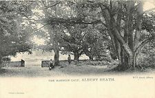 POSTCARD  SURREY  ALBURY  HEATH  THE WARREN GATE