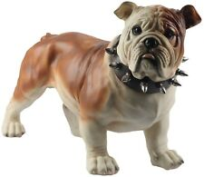 More details for 54.5cm british bulldog spiked collar brown white large standing statue polystone