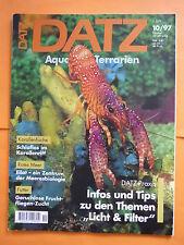 DATZ Heft 10/97 Aquarien Terrarien/Korallenfische,Rotes Meer,Fruchtfliegen-Zucht