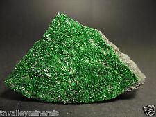 Large Uvarovite Green Garnet Crystal Cluster Specimen Flat Back #TN183.7
