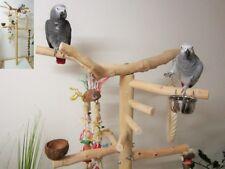 Freisitz für Papageien a. Buchenholz,Papageienspielzeug,mittlere/große Papageien