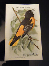 Vintage Arm & Hammer Useful Birds of America - Baltimore Oriole - No. 8