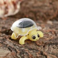 Educational Solar Powered Turtle Tortoise Robot Toy Toy Powered Gadget L5Y7
