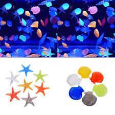10Pcs Glow in The Dark Stones Fish Tank Aquarium Garden Luminous Conch Starfish