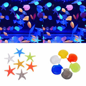 10Pcs Glow in The Dark Stones Fish Tank Aquarium Garden Luminous Conch Starfish