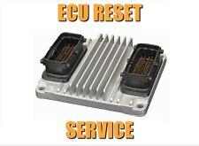 VAUXHALL OPEL DELFI DELCO HSFI 2.0 2.1 2.3 2.4 ENGINE ECU RESET SERVICE
