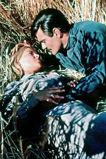 Omar Sharif About To Kiss Julie Christie Straw Doctor Zhivago 11x17 Mini Poster