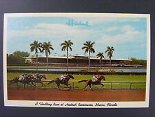 Miami Florida FL Hialeah Racecourse Horse Racing Vintage Color Postcard 1950s