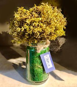 Glass Flower Vase Handcrafted Modern Home Garden  Decor Wedding Gift Box