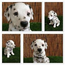 Vivid Arts Pet Pals - Adorable Dalmation puppy *indoor/outdoor* Amazing detail