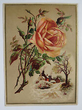 Beautiful Victorian Reward of Honor Card w/ Roses & Cottages on Front, Teaching
