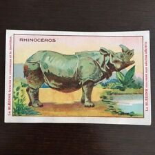 Chromo Bledine Jacquemaire Animals Wild the Rhinoceros - the Rhinoceros