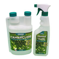 CANNA CURE SPIDERMITE KILLER  BUG PEST  PLANT GROWTH HYDROPONICS