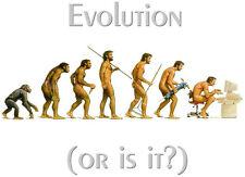 EVOLUTION 'OR IS IT?' Joke T-Shirt Iron On Transfer