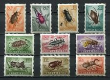 HUNGARY 1954 MNH Insects Beetles 10v 32343
