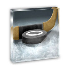 Hockey Puck and Stick Acrylic Office Mini Desk Plaque Ornament Paperweight