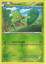 POKEMON CARDS XY PRIMAL CLASH - TREECKO 6/160 REV HOLO