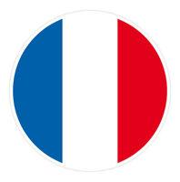 6 x Autocollant 5cm drapeau rond FRANCE sticker valise PC vélo voiture
