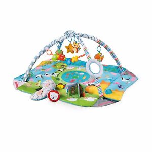 Baby Play Mat, New Born to Toddler Ball Pit, 5 in 1 Activity Gym.5 Toys BOOK