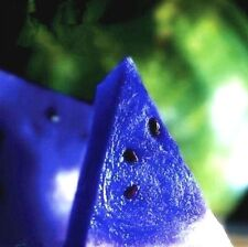 FD808 Rare Sweet Watermelon Seeds Fruit Garden Seed ~Blue~ 10PCs Free Shipping