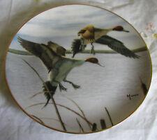 Migrants Plate David Maass Ducks Taking Flight