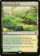 MTG - Khans of Tarkir -  Windswept Heath  x1 SP/NM