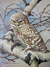 BASIL EDE BIRD PRINT ~ LITTLE OWL