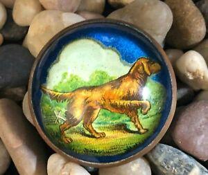 Antique Golden Retriever Dog Domed Glass Brooch