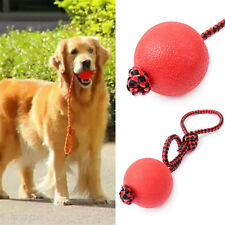 Indestructible Soild Dog Ball Rope Pet Puppy Chew Play Tooth Cleaning Toys NS