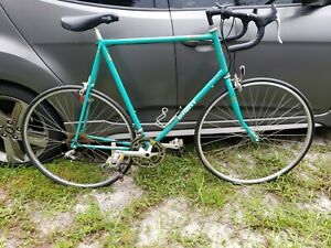 Giant Perigee Road Bike vintage bicycle classic