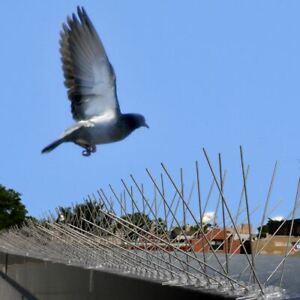 "Bird-X Extra-Wide Stainless Steel Bird Spikes, 24 Feet 8"" coverage, block pest b"