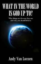 What in the World is God Up To?: Why things are the way they are and why you sho
