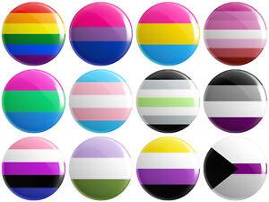 12 x LGBTQ+ Pride Flag BUTTON PIN BADGES 25mm 1 INCH Lesbian Gay Gender Bisexual