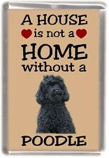 "Poodle (Black) Dog Fridge Magnet ""A HOUSE IS NOT A HOME"" by Starprint"