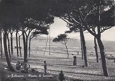 FOLLONICA (Grosseto) - Pineta di Levante 1957
