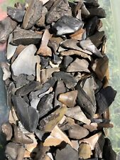 Lot of 150 Fossil SHARK TEETH. MEGALODON Tooth Nature Ocean