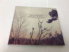 Lee Bains III & The Glory Fires : There Is a Bomb in Gilead CD (2012) MINT/EX-