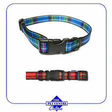 Ancol Nylon Dog Collars