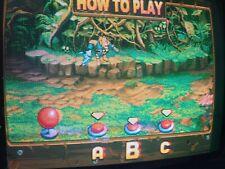 demon front igs pgm arcade original jamma pcb 2002