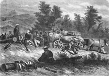TRANSPORT. Russian convoy on the halt, antique print, 1855