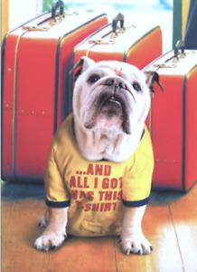 """My Tail is Still Wagging!"" AVANTI DOG Pet Sitting THANK YOU CARD Bulldog"
