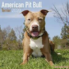 American Pit Bull Terrier Calendar 2020 Premium Dog Breed Calendars
