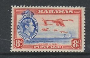 Bahamas - 1938, 8d Blue & Red, Greater Flamingo Bird stamp - MNH - SG 160