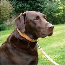 Rosewood Luxury Leather Dog Collars   All Sizes Colours Widths - NQP