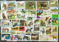 Horses on stamps collection of 100  all different