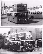 12 Devon Brixham Torquay Exeter Bus RP postcard size photos on card plain backs